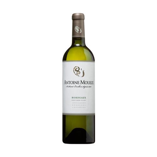 Vinho Branco Antoine Moueix Bordeaux Sauvignon Blanc França 2009 750 ml